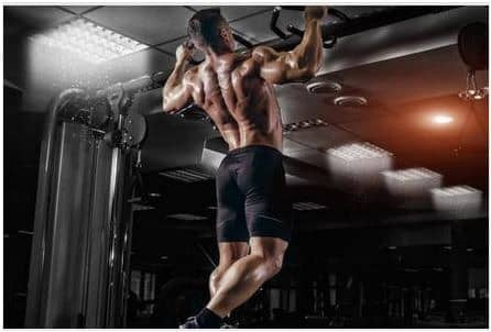 bodybuilding with crazy bulk