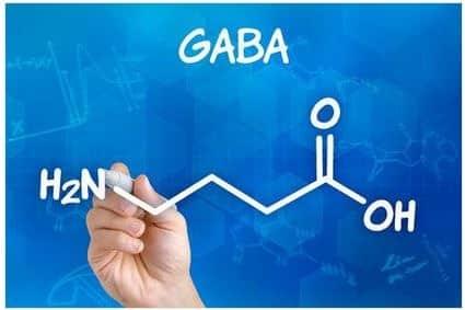 GABA (Gamma-Aminobutyric Acid)