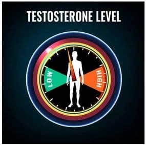 Optimal Testosterone Levels