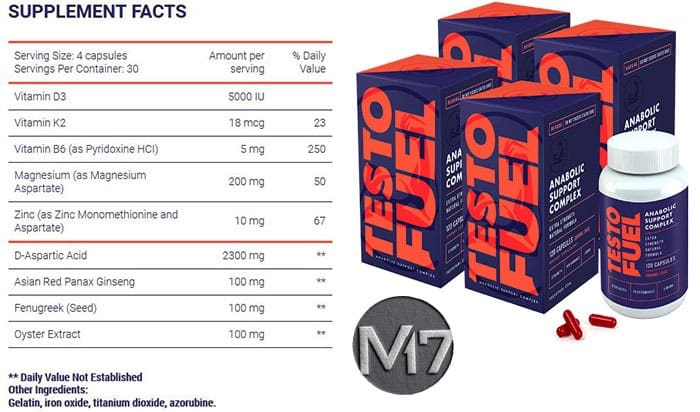Testo Fuel Ingredients