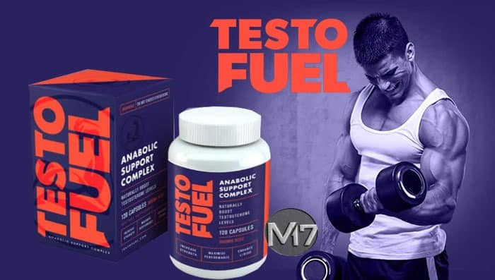 TestoFuel  Review 2019