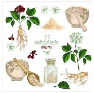 Interactions of Panax Ginseng