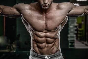 pure lean muscle tissue