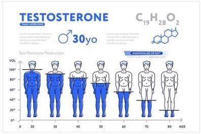 best testosterone booster quality effect