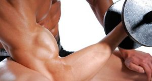 Build Your Muscle Fast